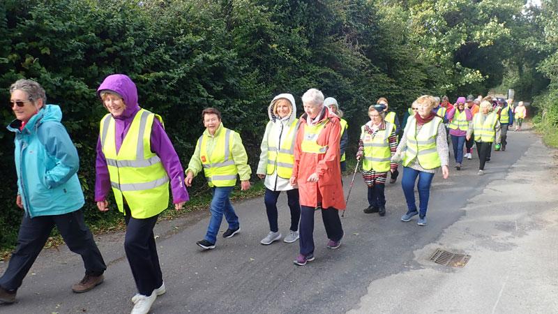 اثرات پیاده روی برای سالمند