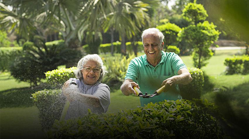 باغبانی باعث شادی در سالمندان میگردد