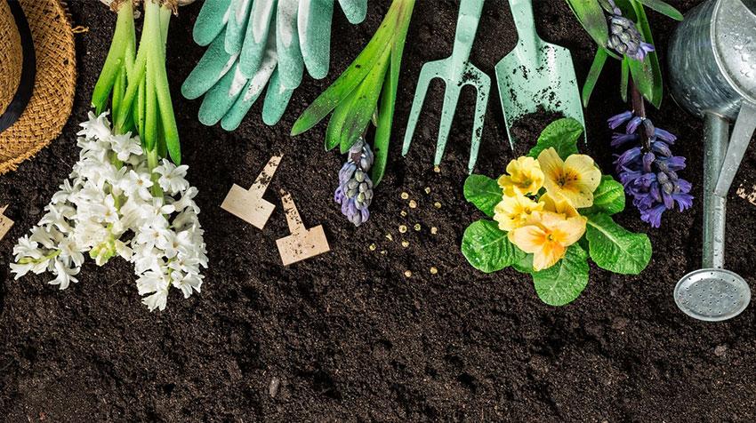 استفاده از ابزار سبک برای باغبانی سالمندان