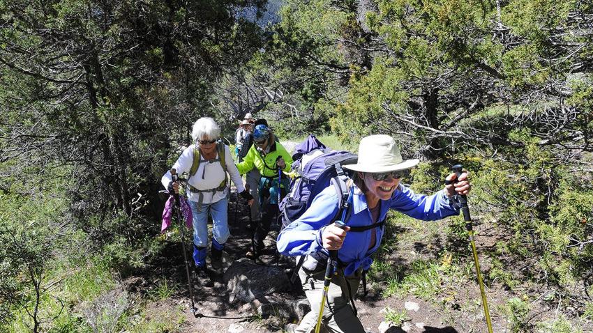 کوهنوردی سالمندان