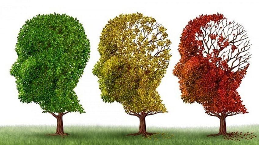مسائل حقوقی سالمند آلزایمری